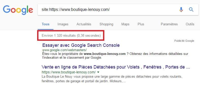 Pages Indexées dans Google