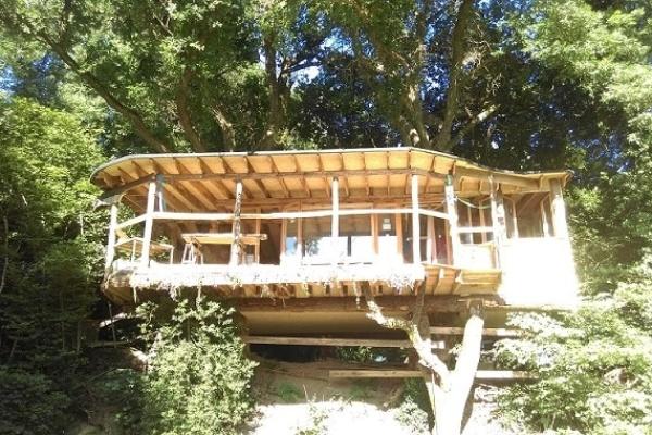 Cabane-dans-les-arbres-ekolobreizh
