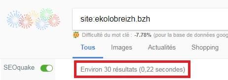 Pages Indexées dans Google Ekolobreizh
