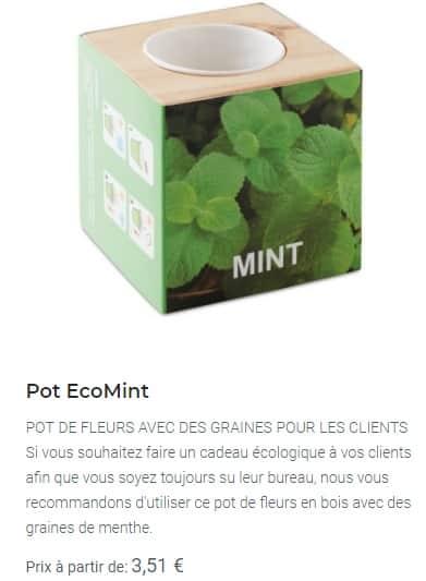 Pot EcoMint