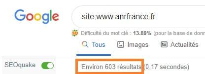 Pages indexées par Google